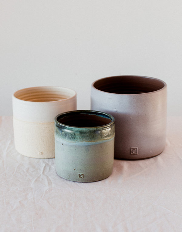 Palmy planter collection