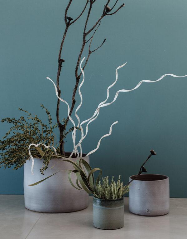 Palmy Ceramic planters